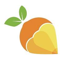 维橙教育实习招聘