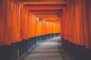 《职场生存:职场的语言》 - 实习僧藏经阁