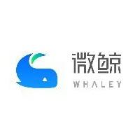 微鲸科技有限公司实习招聘