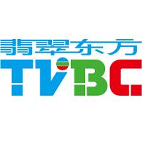 TVBC实习招聘