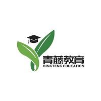 青藤教育实习招聘