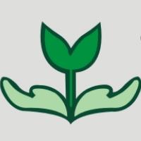 上海映绿实习招聘