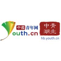 中青湖北实习招聘